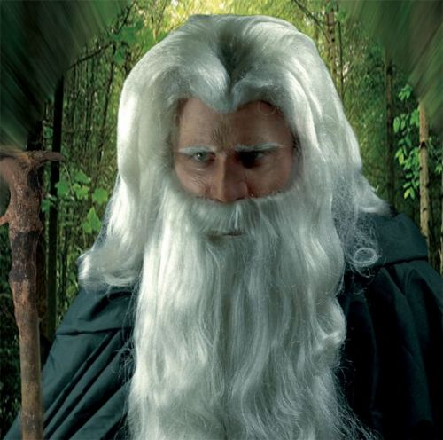 Prosthetic Nose Wizard Halloween Magician Merlin Medieval